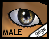 [GG]Male Eyes8