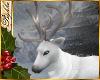 I~Snowy Reindeer