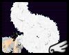 [S]White Fluff Tail-M/F