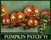 Pumpkin Patch V1