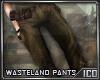 ICO Wasteland Pants