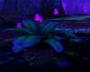 Underdark Botanical