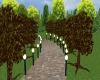 lighted path and trees