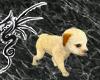 [LD]Newborn Puppy Cream