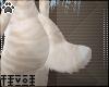 Tiv  Bwi Tail (M/F) V2