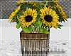 H. Farmhouse Sunflowers