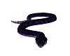 Ava The Snake