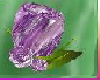 [TGUU]Rose Pin Purplish
