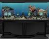 Aquarium/Fish