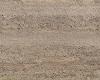 WW: Dirt Path