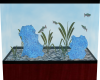 An Aquarium For My Man