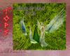 Queen Of Birds Gown