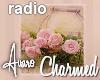 Charmed Painting Radio