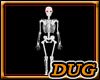 (D) Skeleton Skeletons