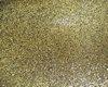 Gold Waist Brooch
