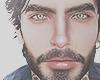 Dan brows/beard
