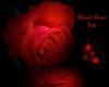 Blood rose fan
