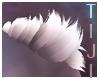 Coco | Shoulder Fur