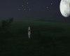 Moonlit Field