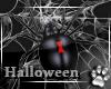 Halloween -Club Bundle