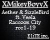 Raccoon City - ft Veela