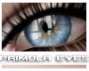 [V4NY] Primula Eyes 01