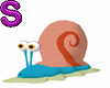 Gary Buddy Snail
