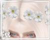 c White Daisy Crown