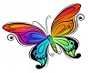 Colorful Butterfly Right