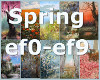 Spring BG's