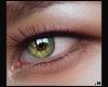 Grace Eye \ Leaf