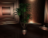 ISTERIA POTTED PLANT