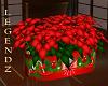 Poinsettia Gift