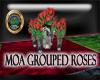 MOA Grouped Roses