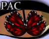 *PAC* Butterfly Dream Rd