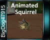 [BD]AnimatedSquirrel
