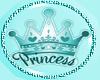 Kids Aqua Princess Paci