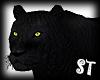 """""""Panther"""" Tiger"""