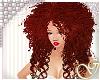 G- Telah Ginger
