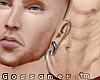 G.Niklas'Ginger