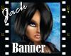 KattLiquid Flash Banner