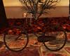 ( K ) WIA Love Bike