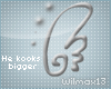 V~| Wing