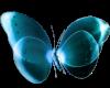 blue modern butterfly