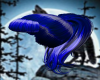 latex bianca blue pony