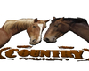 Country Horse Floor Sign
