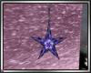 star flower garden