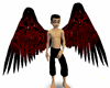 Red Darkness Wings