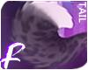 Royal | Tail 2