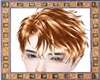 Golden Hairstyle